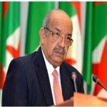 56th Anniversary of Algeria's Diplomacy Day